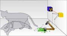 320px-Schrodingers_cat.jpg