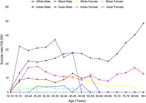 suicide rates by age and race 2004.jpg